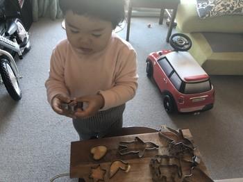 Alan 1 歳11ヶ月_3.jpg